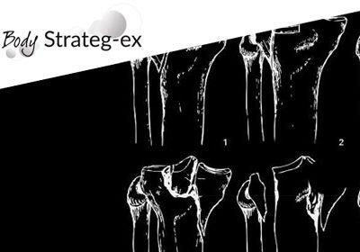 Body Strateg Ex Lower