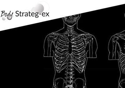 Body Strateg Ex organs